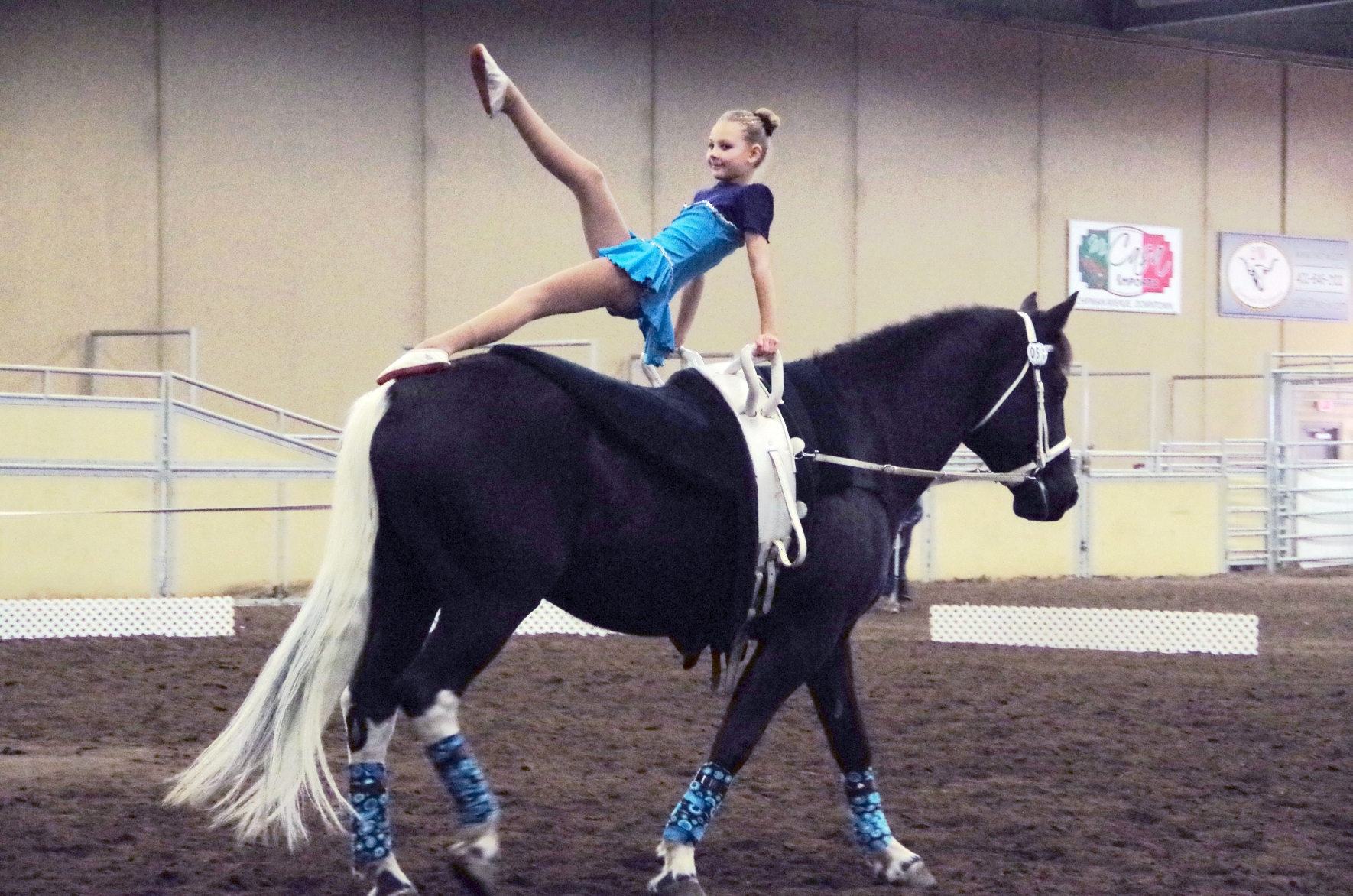 What Is Equestrian Vaulting Seva